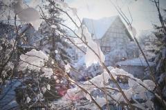 Winter2021-5812