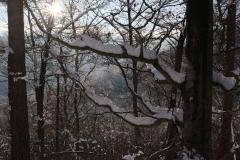 Winter2021-5842